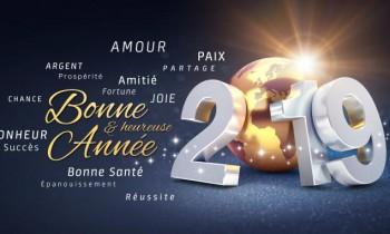 BOTEVA VOUS SOUHAITE UNE BONNE ANNEE 2019 !!